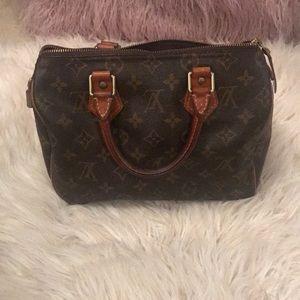 Louis Vuitton small speedy handbag